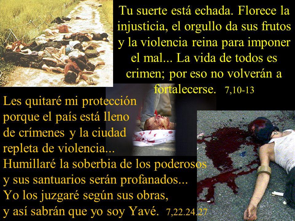 Sus sacerdotes han violado mi Ley y profanado las cosas santas...