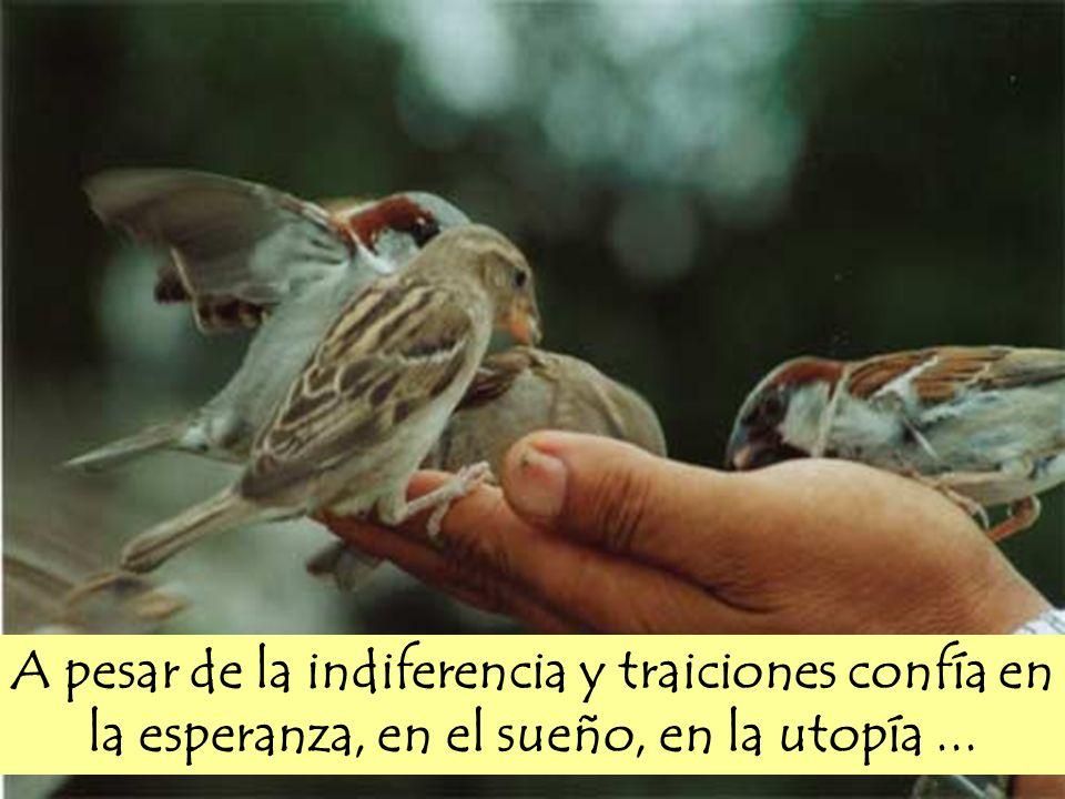 A pesar de la indiferencia y traiciones confía en la esperanza, en el sueño, en la utopía...
