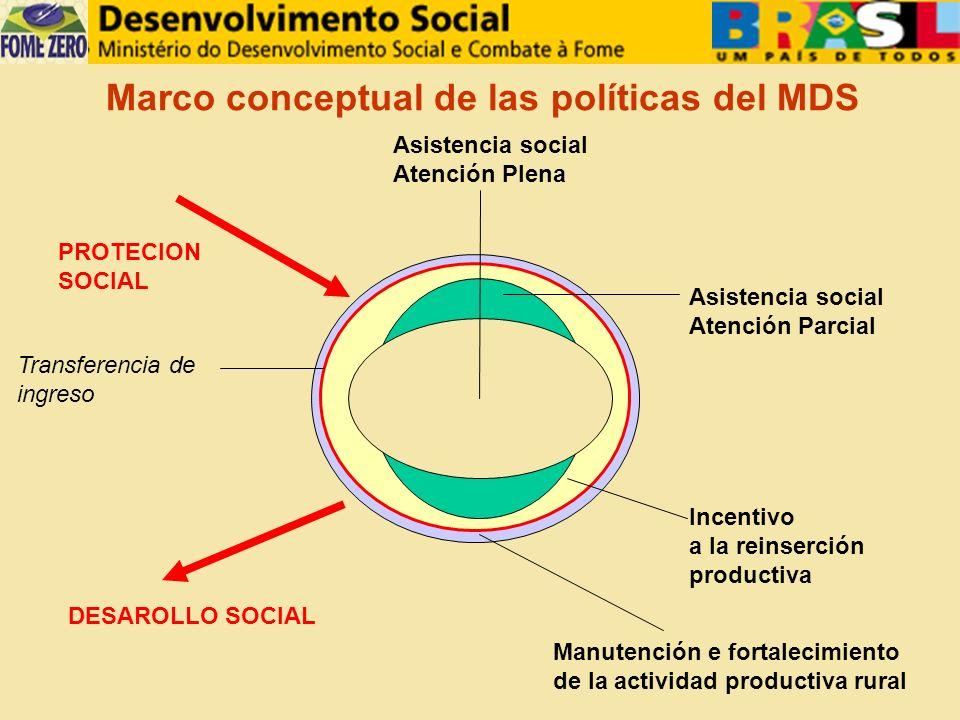Marco conceptual de las políticas del MDS Incentivo a la reinserción productiva Asistencia social Atención Plena Asistencia social Atención Parcial Manutención e fortalecimiento de la actividad productiva rural Transferencia de ingreso DESAROLLO SOCIAL PROTECION SOCIAL