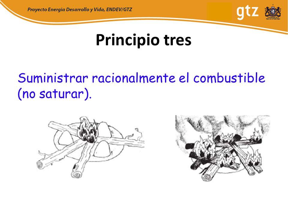 Principio tres Suministrar racionalmente el combustible (no saturar).