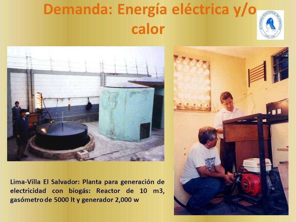 Lima-Villa El Salvador: Planta para generación de electricidad con biogás: Reactor de 10 m3, gasómetro de 5000 lt y generador 2,000 w Demanda: Energía eléctrica y/o calor