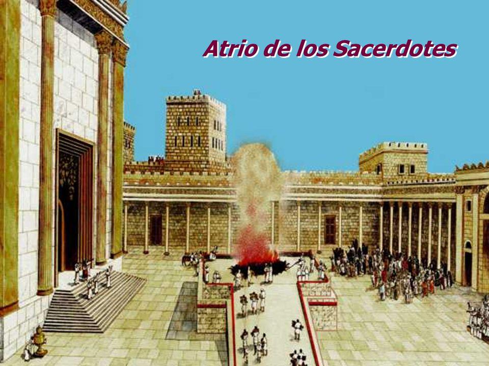 Atrio de los gentiles Atrio de las mujeres Atrio de los israelitas Habitaciones de los sacerdotes Acueducto y estanque Mesas para el sacrificio SS San
