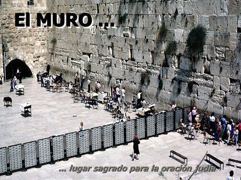 Desde entonces Conflicto permanente... Lugar sagrado judío: el Muro de las Lamentaciones Lugar sagrado árabe: La Mezquita de Omar o La Casa de la Roca