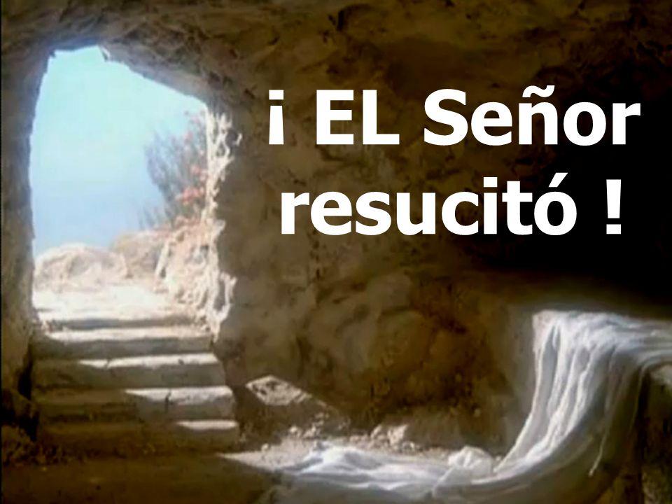 5º.LA RESURRECCIÓN DEL SEÑOR PRIMICIA DE UNA GRAN COSECHA 5º.