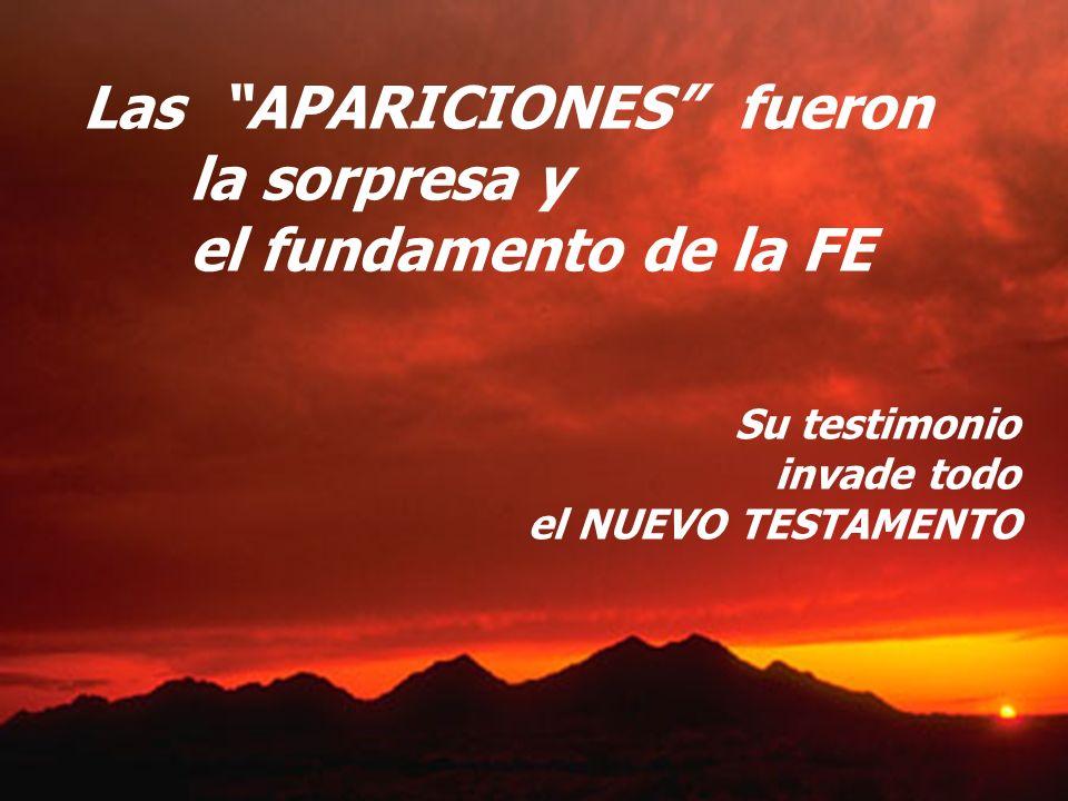 Las APARICIONES fueron la sorpresa y el fundamento de la FE Su testimonio invade todo el NUEVO TESTAMENTO