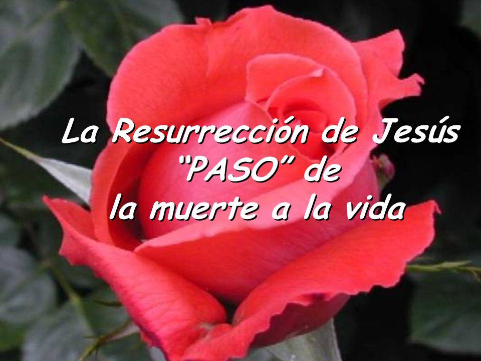 La Resurrección … un reto para nuestra fe La Resurrección … un reto para nuestra fe ¿Estoy convencido de que el Señor ha resucitado.