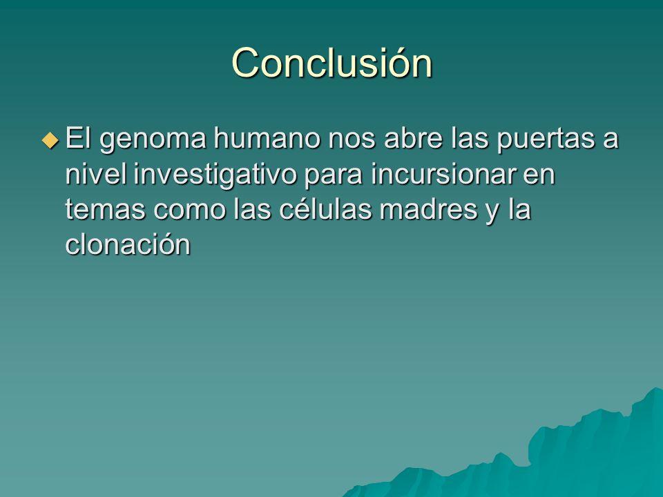 Conclusión El genoma humano nos abre las puertas a nivel investigativo para incursionar en temas como las células madres y la clonación El genoma huma