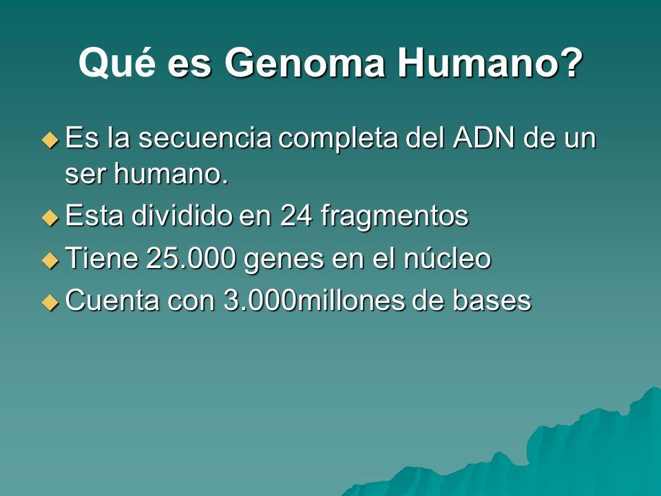 es Genoma Humano? Qué es Genoma Humano? Es la secuencia completa del ADN de un ser humano. Es la secuencia completa del ADN de un ser humano. Esta div