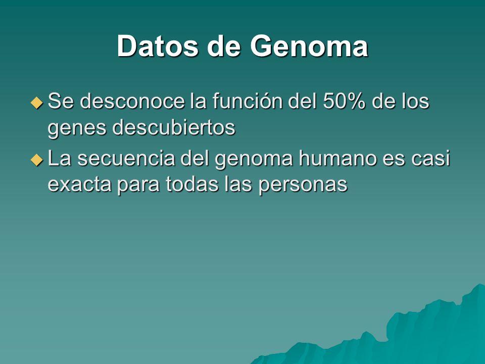 Datos de Genoma Se desconoce la función del 50% de los genes descubiertos Se desconoce la función del 50% de los genes descubiertos La secuencia del g