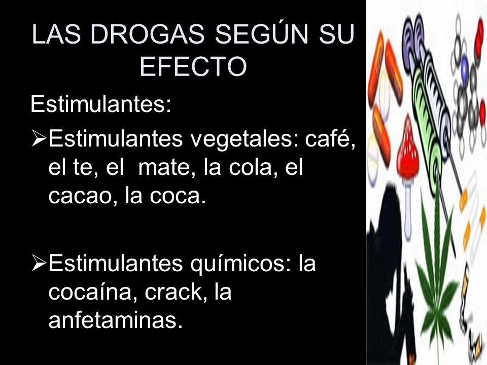 LAS DROGAS SEGÚN SU EFECTO Estimulantes: Estimulantes vegetales: café, el te, el mate, la cola, el cacao, la coca. Estimulantes químicos: la cocaína,