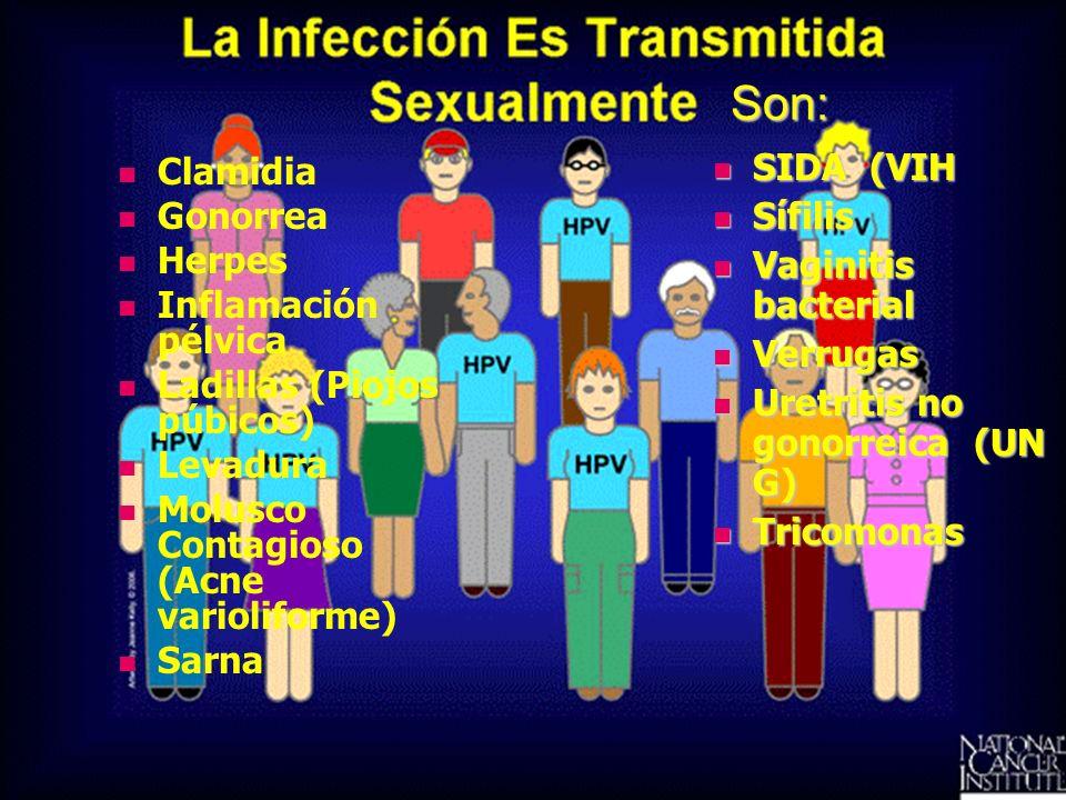 Son: Clamidia Gonorrea Herpes Inflamación pélvica Ladillas (Piojos púbicos) Levadura Molusco Contagioso (Acne varioliforme) Sarna SIDA (VIH SIDA (VIH