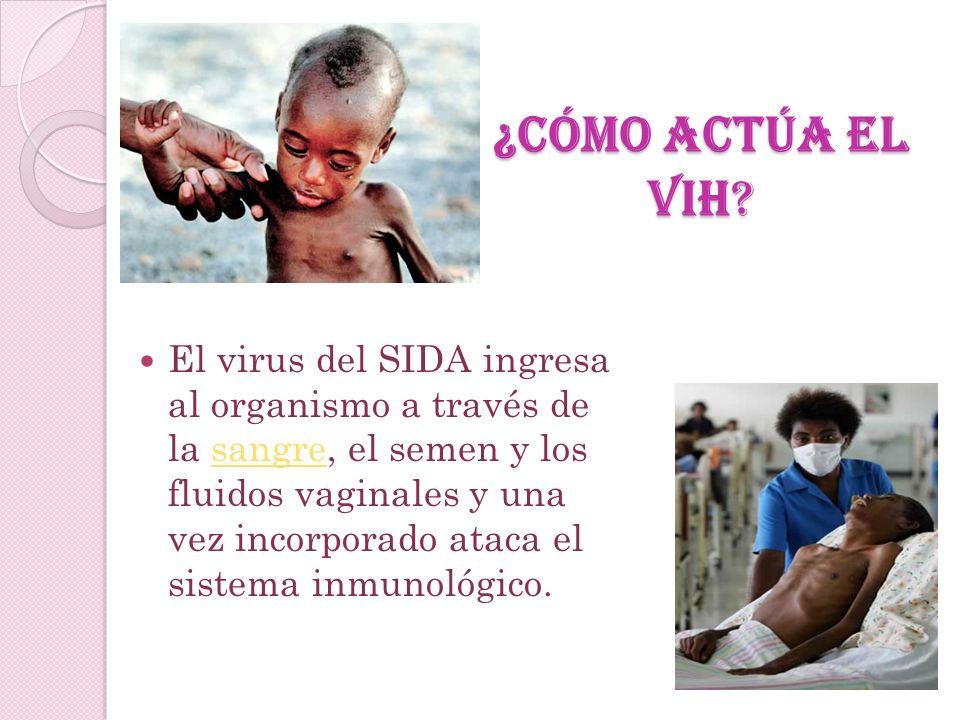 ¿ QUE ES EL SIDA ? El SIDA es una etapa avanzada de la infección por el Virus de Inmunodeficiencia Humana (VIH). Se trata de un retrovirus que ataca l