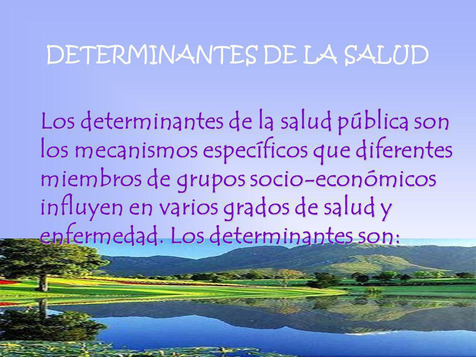 DETERMINANTES DE LA SALUD Los determinantes de la salud pública son los mecanismos específicos que diferentes miembros de grupos socio-económicos infl