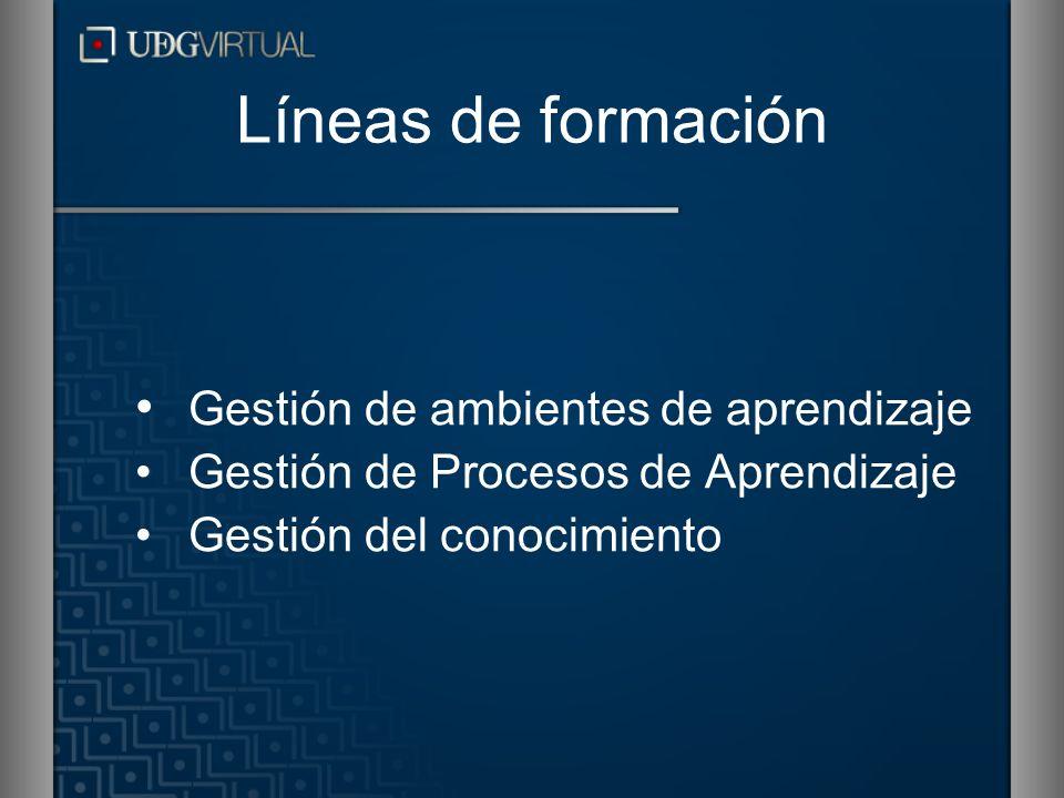 Líneas de formación Gestión de ambientes de aprendizaje Gestión de Procesos de Aprendizaje Gestión del conocimiento