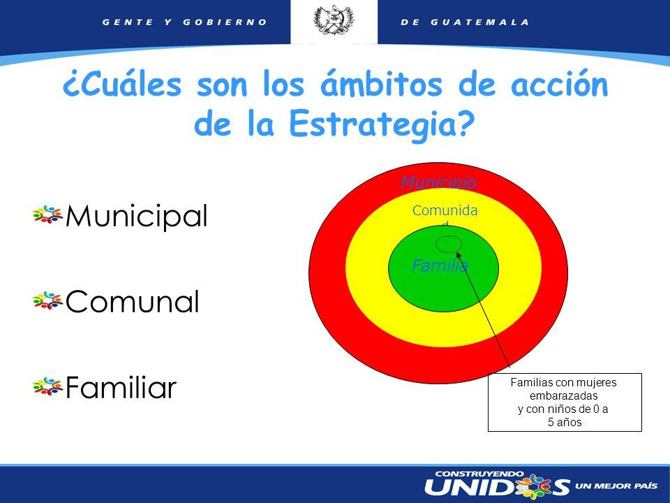 9 ¿Cuáles son los ámbitos de acción de la Estrategia? Municipal Comunal Familiar Municipio Comunida d Familia Familias con mujeres embarazadas y con n