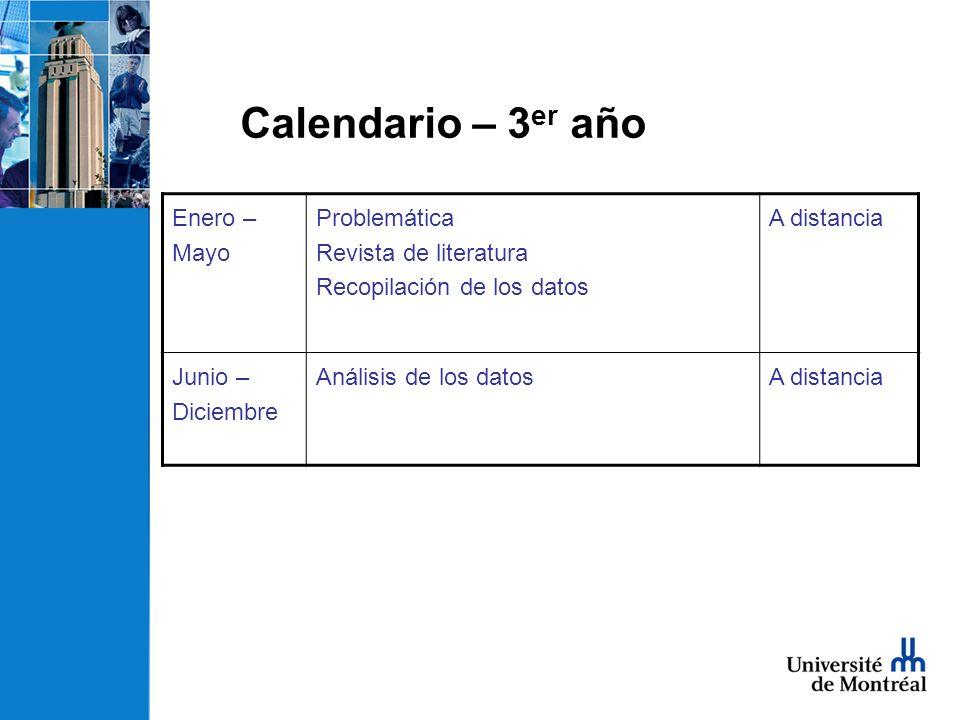 Calendario – 3 er año Enero – Mayo Problemática Revista de literatura Recopilación de los datos A distancia Junio – Diciembre Análisis de los datosA distancia