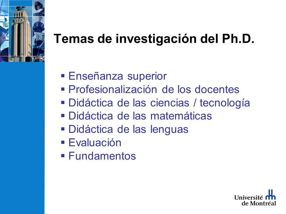 Temas de investigación del Ph.D.