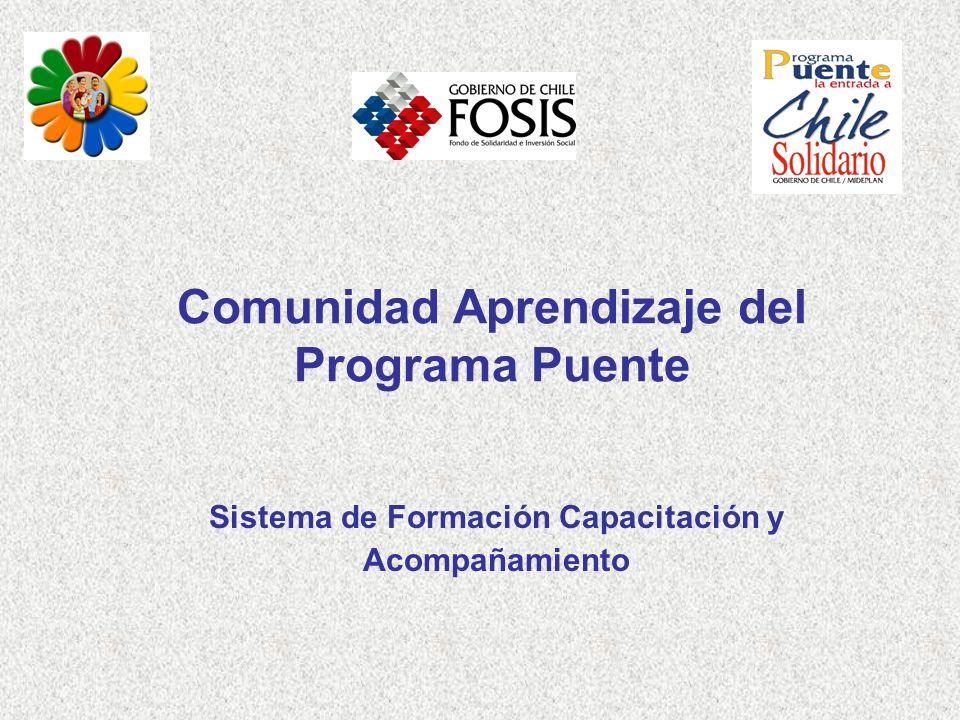 Comunidad Aprendizaje del Programa Puente Sistema de Formación Capacitación y Acompañamiento