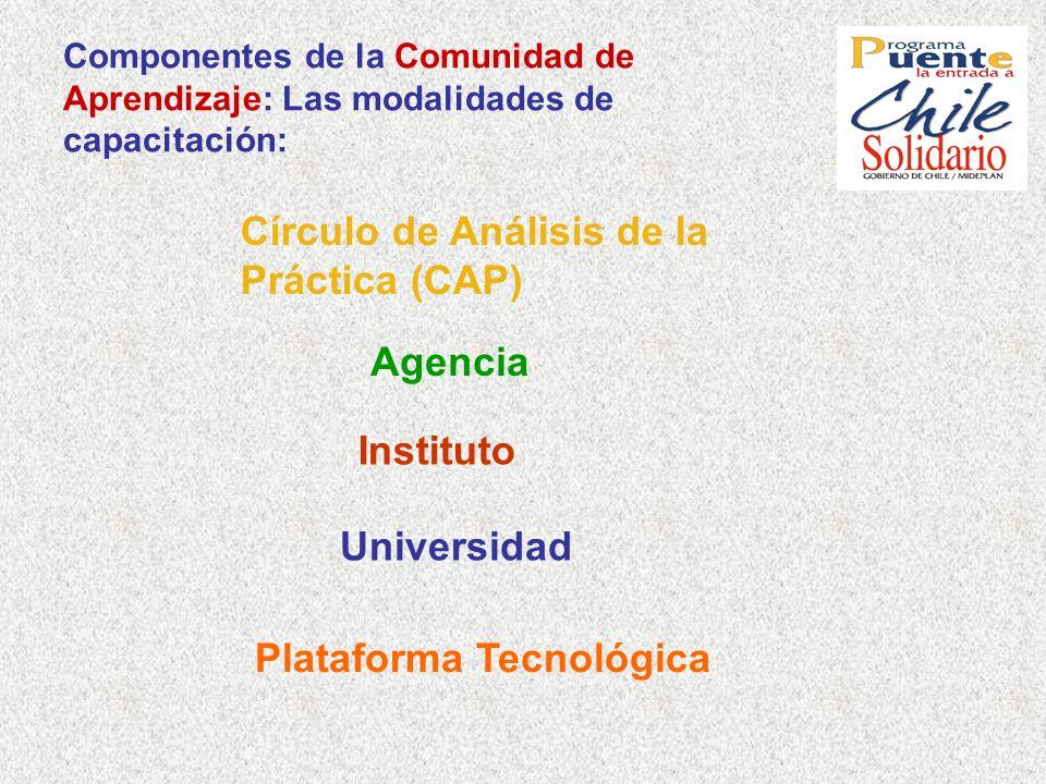 Componentes de la Comunidad de Aprendizaje: Las modalidades de capacitación: Círculo de Análisis de la Práctica (CAP) Agencia Instituto Universidad Pl