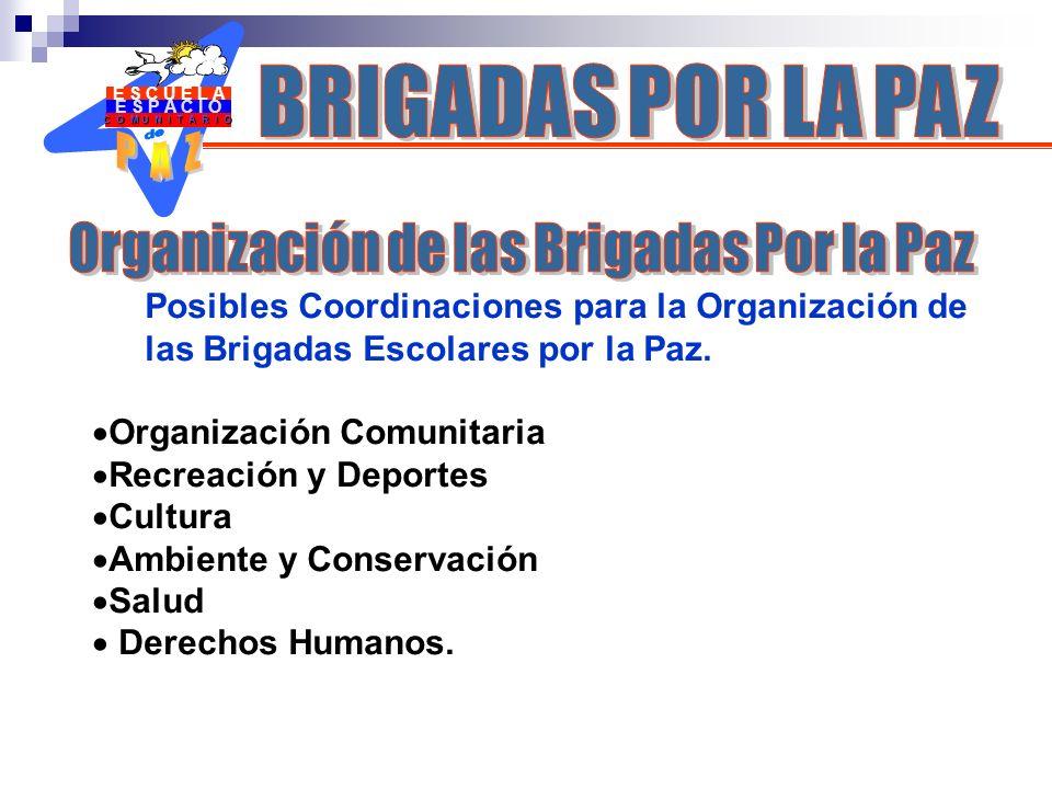 E S P A C I O C O M U N I T A R I O E S C U E L A Posibles Coordinaciones para la Organización de las Brigadas Escolares por la Paz. Organización Comu