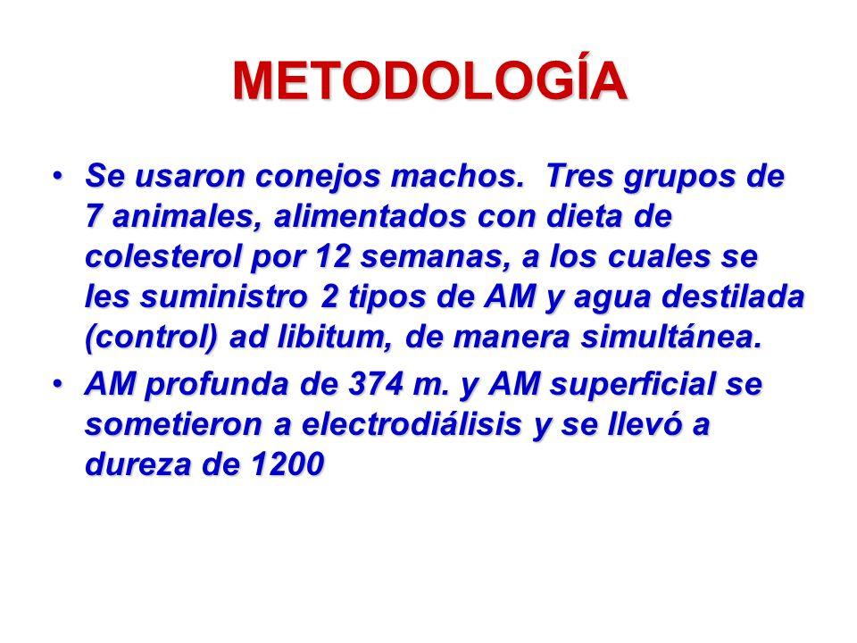METODOLOGÍA Se usaron conejos machos. Tres grupos de 7 animales, alimentados con dieta de colesterol por 12 semanas, a los cuales se les suministro 2