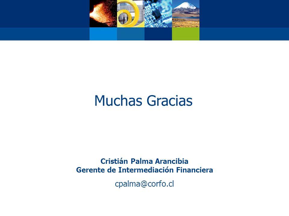 Muchas Gracias Cristián Palma Arancibia Gerente de Intermediación Financiera cpalma@corfo.cl