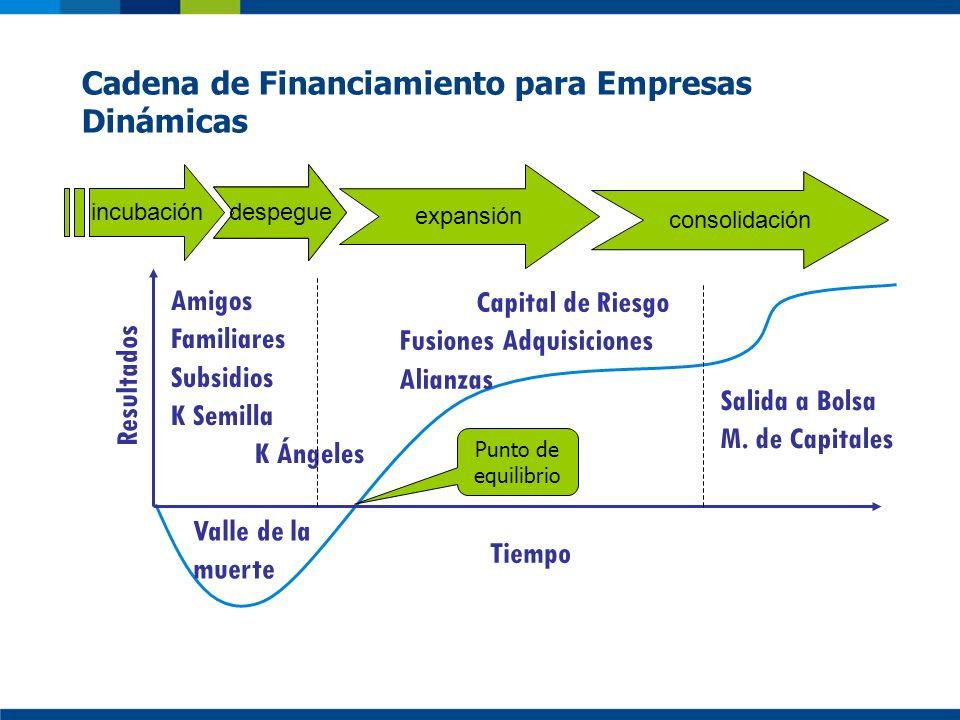 capital Salida a Bolsa M. de Capitales Tiempo Resultados incubación expansión consolidación Despegue Valle de la muerte Punto de equilibrio Amigos Fam