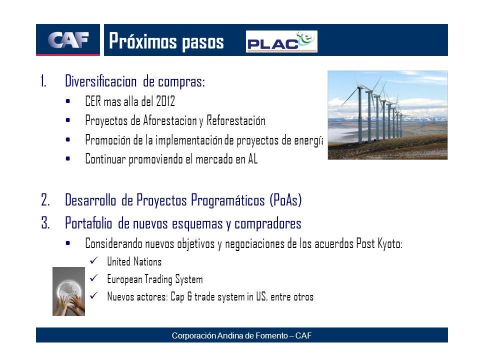 Corporación Andina de Fomento – CAF Próximos pasos 1.Diversificacion de compras: CER mas alla del 2012 Proyectos de Aforestacion y Reforestación Promo