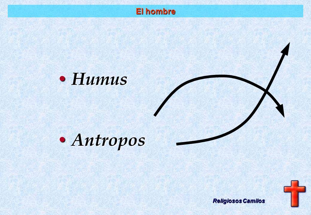 Dimensiones de la persona Religiosos Camilos Vida - persona - salud