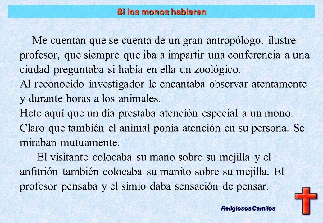 Humus Antropos Humus Antropos El hombre Religiosos Camilos