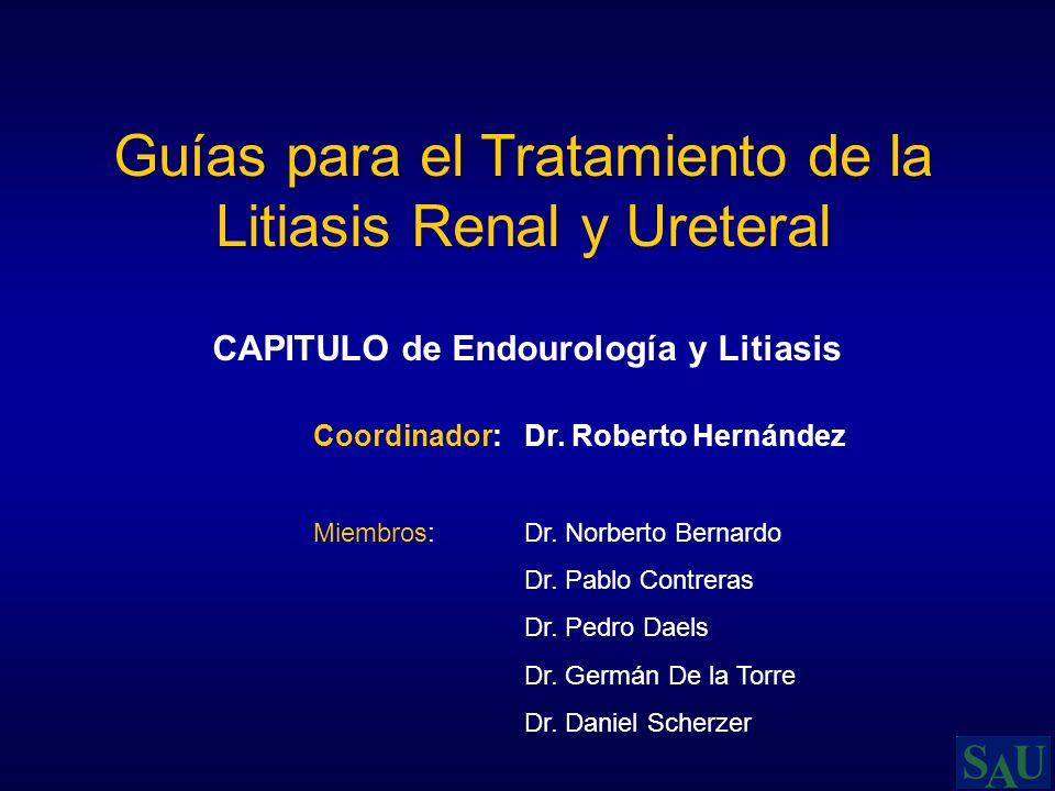 CAPITULO de Endourología y Litiasis Coordinador: Dr. Roberto Hernández Miembros: Dr. Norberto Bernardo Dr. Pablo Contreras Dr. Pedro Daels Dr. Germán