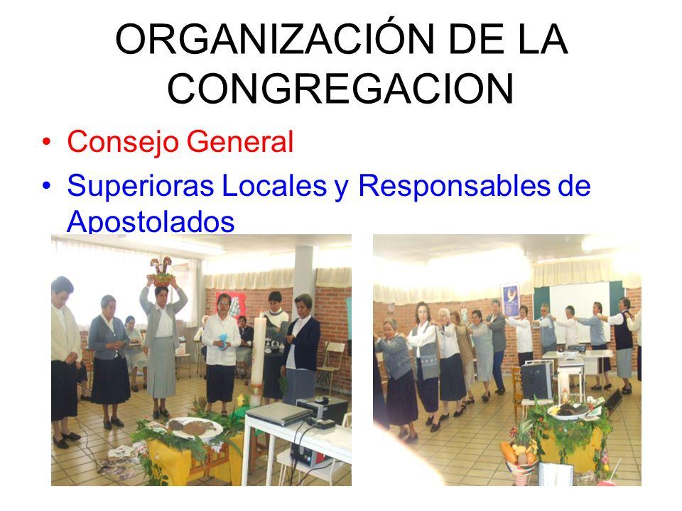 ORGANIZACIÓN DE LA CONGREGACION Consejo General Superioras Locales y Responsables de Apostolados