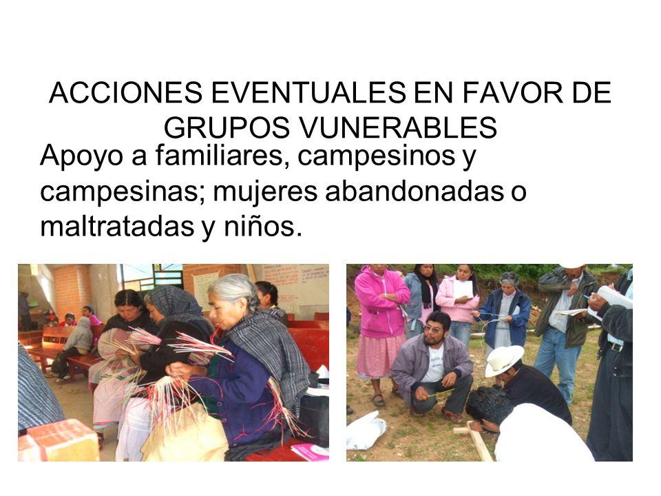 ACCIONES EVENTUALES EN FAVOR DE GRUPOS VUNERABLES Apoyo a familiares, campesinos y campesinas; mujeres abandonadas o maltratadas y niños.
