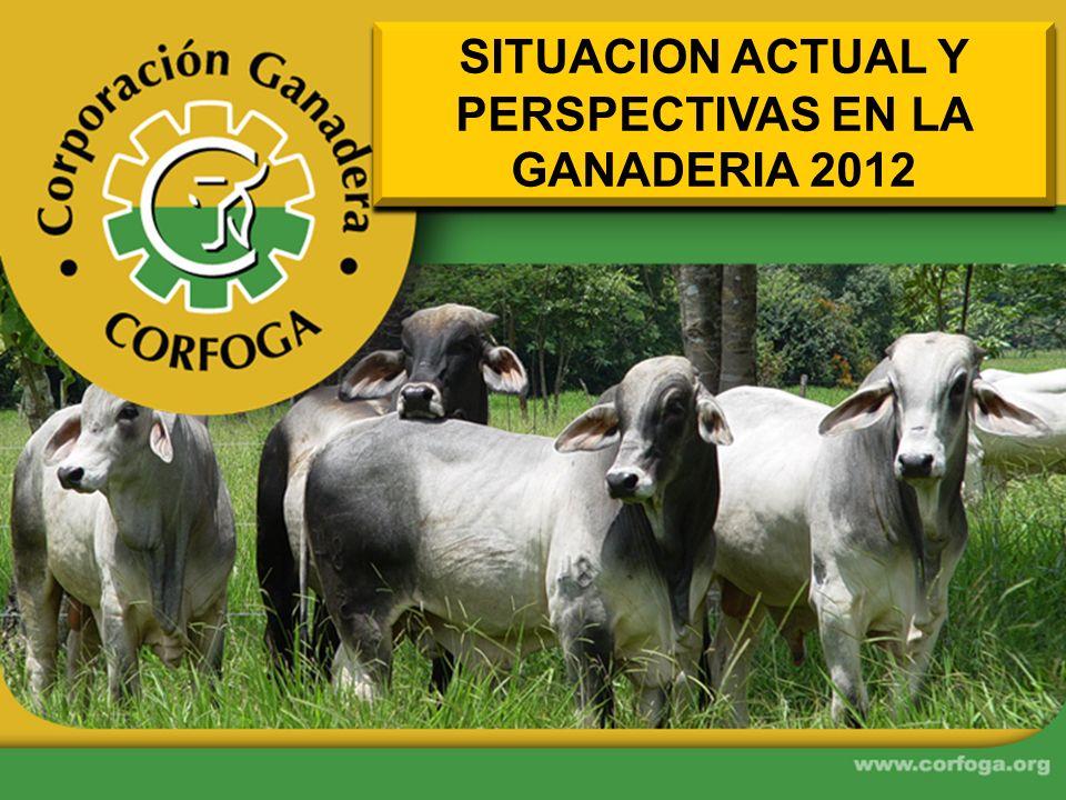 SITUACION ACTUAL Y PERSPECTIVAS EN LA GANADERIA 2012