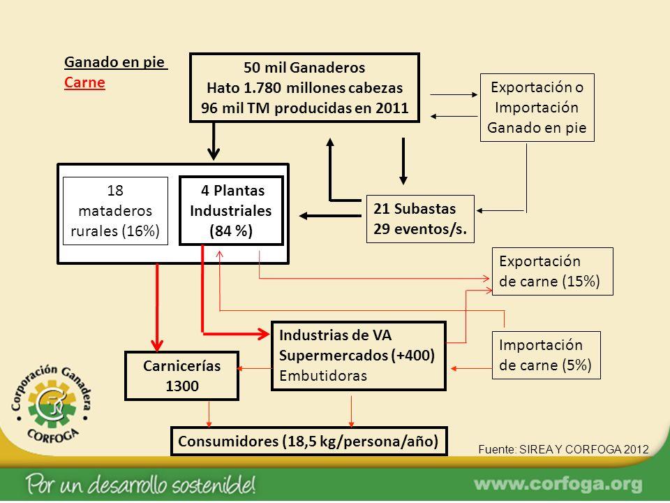 50 mil Ganaderos Hato 1.780 millones cabezas 96 mil TM producidas en 2011 4 Plantas Industriales (84 %) 21 Subastas 29 eventos/s. Exportación o Import