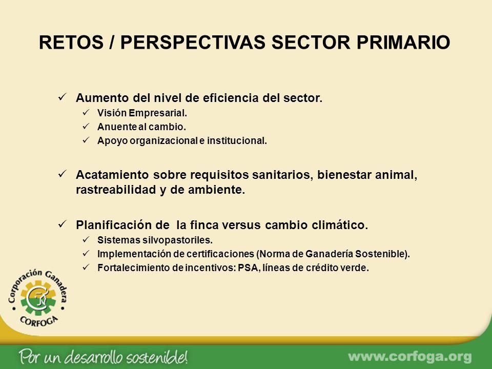 RETOS / PERSPECTIVAS SECTOR PRIMARIO Aumento del nivel de eficiencia del sector. Visión Empresarial. Anuente al cambio. Apoyo organizacional e institu