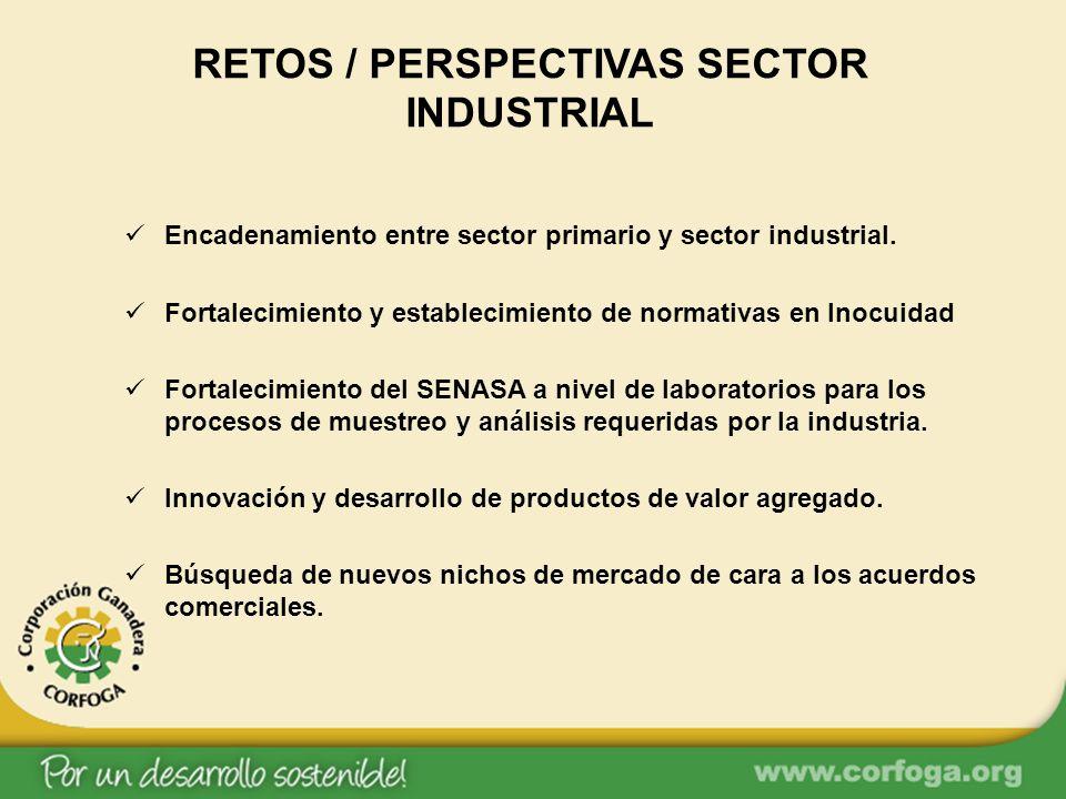 RETOS / PERSPECTIVAS SECTOR INDUSTRIAL Encadenamiento entre sector primario y sector industrial. Fortalecimiento y establecimiento de normativas en In