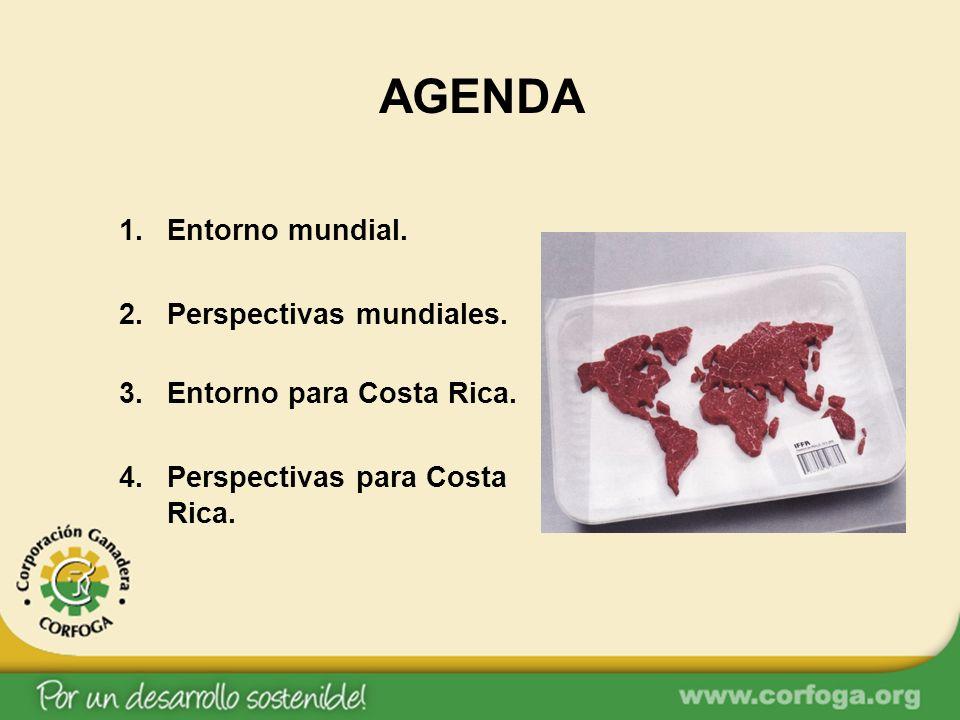 AGENDA 1.Entorno mundial. 2.Perspectivas mundiales. 3.Entorno para Costa Rica. 4.Perspectivas para Costa Rica.
