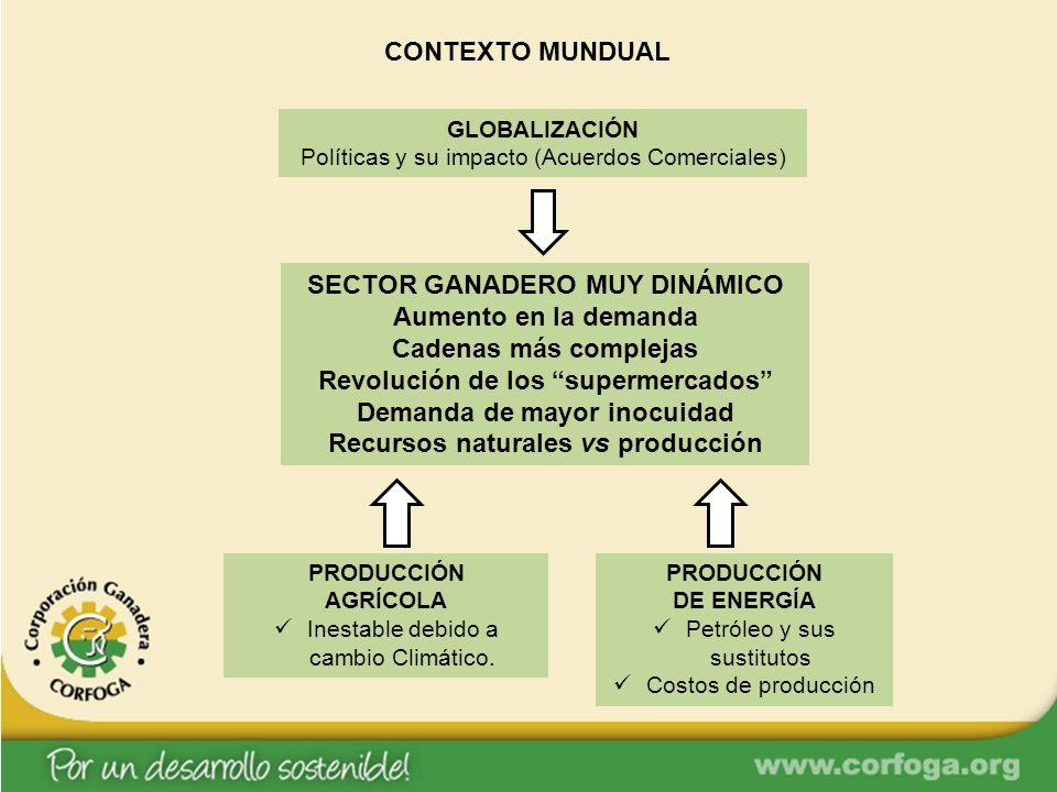 GLOBALIZACIÓN Políticas y su impacto (Acuerdos Comerciales) SECTOR GANADERO MUY DINÁMICO Aumento en la demanda Cadenas más complejas Revolución de los