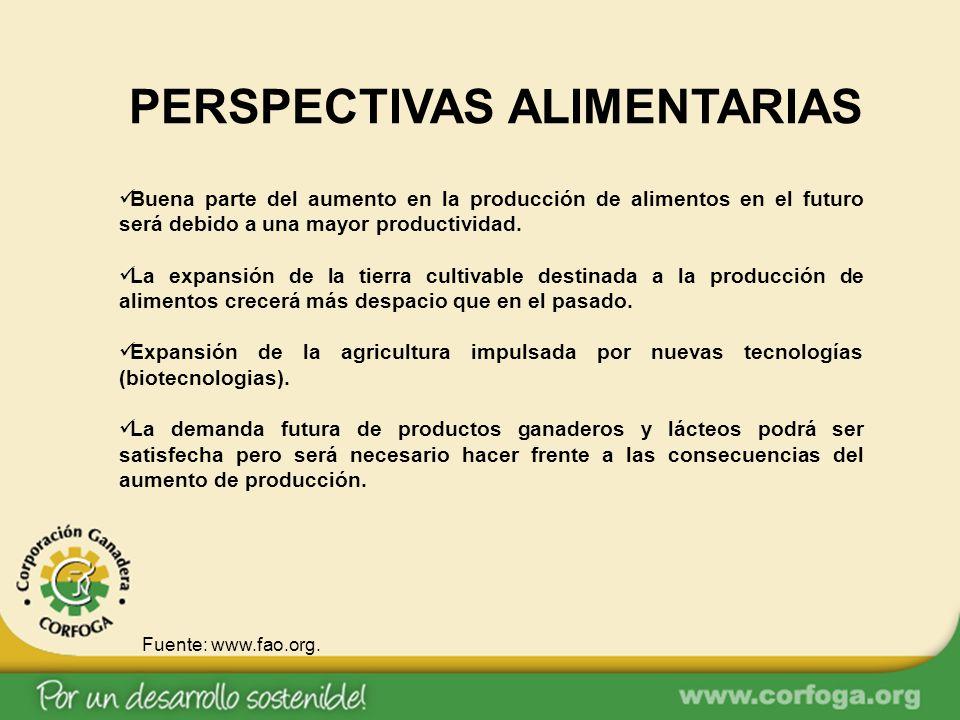 PERSPECTIVAS ALIMENTARIAS Buena parte del aumento en la producción de alimentos en el futuro será debido a una mayor productividad. La expansión de la