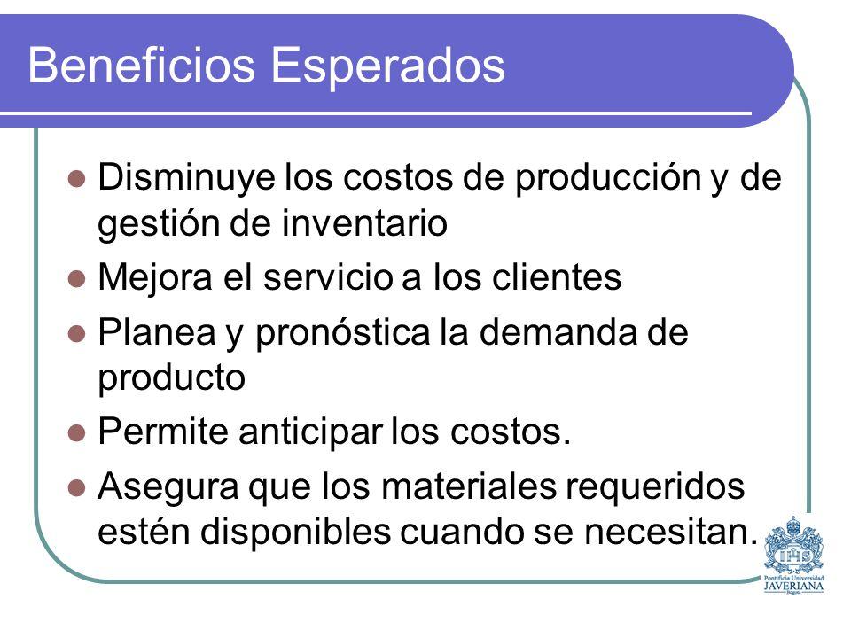 Beneficios Esperados Disminuye los costos de producción y de gestión de inventario Mejora el servicio a los clientes Planea y pronóstica la demanda de producto Permite anticipar los costos.