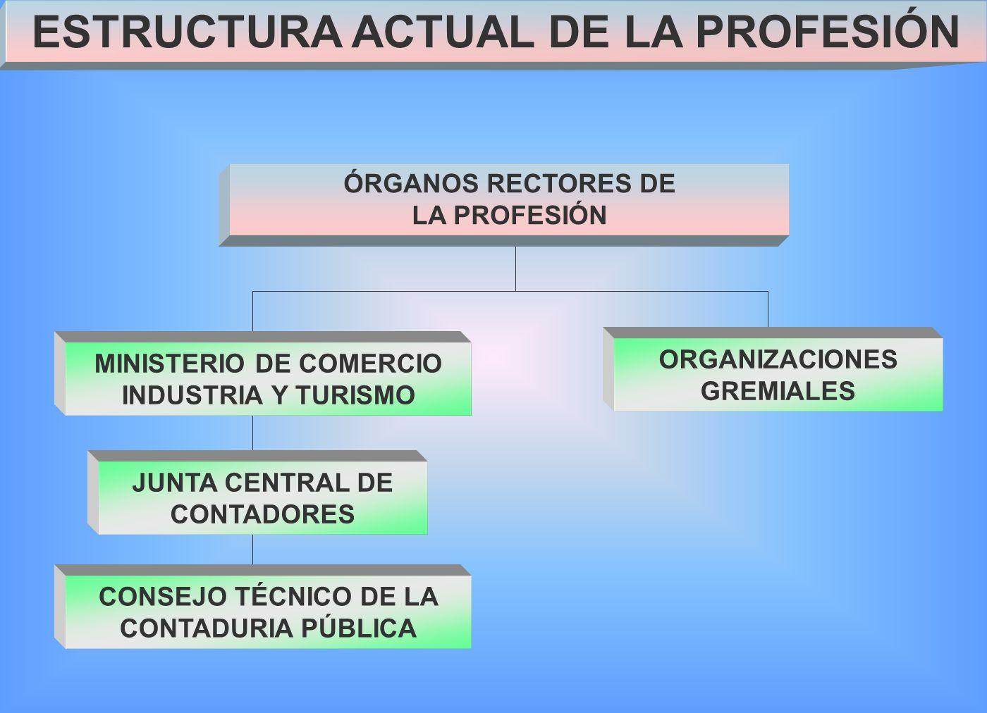 ÓRGANOS RECTORES DE LA PROFESIÓN MINISTERIO DE COMERCIO INDUSTRIA Y TURISMO JUNTA CENTRAL DE CONTADORES CONSEJO TÉCNICO DE LA CONTADURIA PÚBLICA ORGANIZACIONES GREMIALES ESTRUCTURA ACTUAL DE LA PROFESIÓN