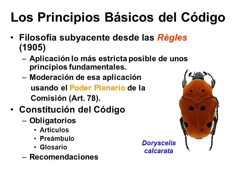 Los Principios Básicos del Código Filosofía subyacente desde las Règles (1905) –Aplicación lo más estricta posible de unos principios fundamentales. –
