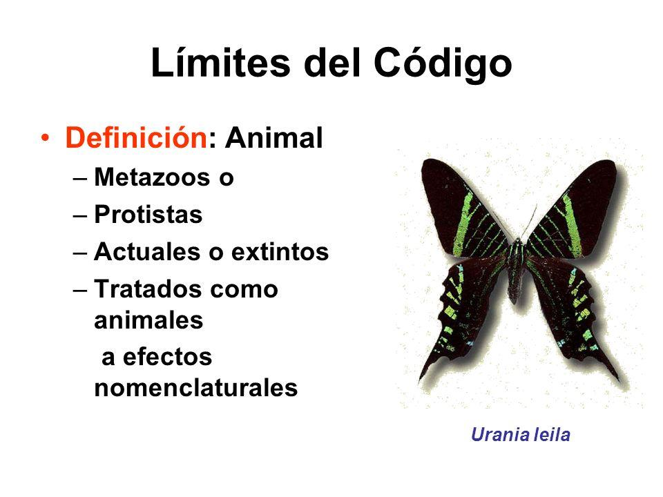 Límites del Código Definición: Animal –Metazoos o –Protistas –Actuales o extintos –Tratados como animales a efectos nomenclaturales Urania leila
