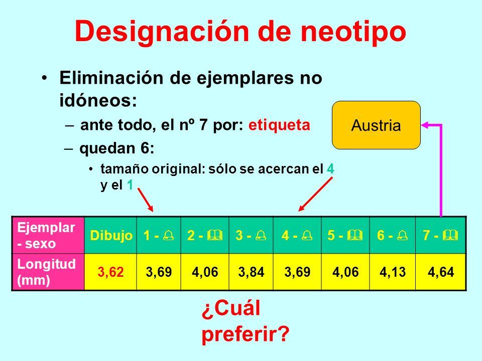 Designación de neotipo Argumentos: –cualquier ejemplar vale para neotipo, pero debiera ser un ejemplar alemán lo más parecido posible a los datos de l