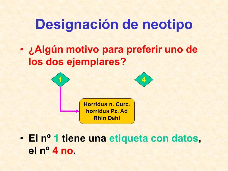 Designación de neotipo Eliminación de ejemplares no idóneos: –ante todo, el nº 7 por: etiqueta ¿Cuál preferir? Ejemplar - sexo Dibujo1 - 2 - 3 - 4 - 5