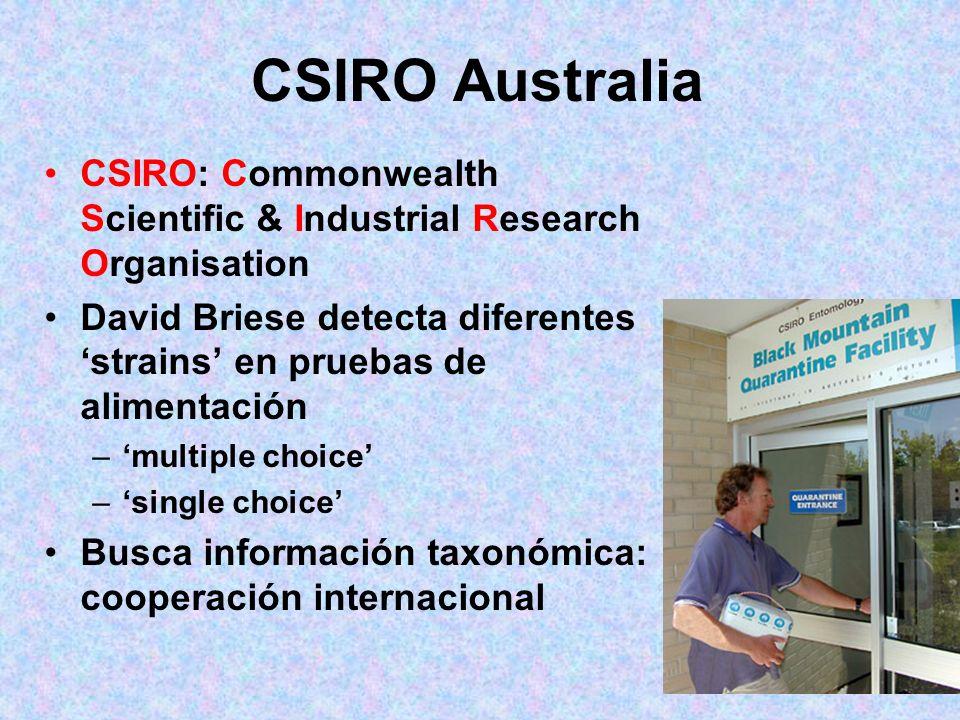 ¡¡¡SORPRESA!!! En pruebas de control en Australia