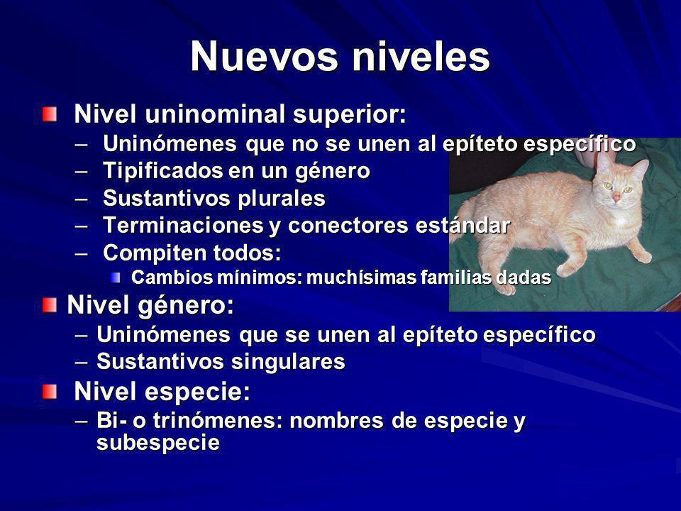 Nuevos niveles Nivel uninominal superior: Nivel uninominal superior: – Uninómenes que no se unen al epíteto específico – Tipificados en un género – Su
