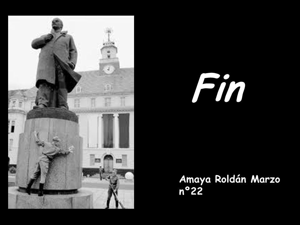 Fin Amaya Roldán Marzo nº22