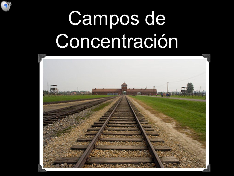llegaban en trenes hasta la misma puerta del campo de concentración...